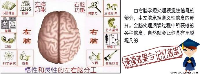 快速阅读 阅读速度 记忆效率 精英特速读 快速阅读训练
