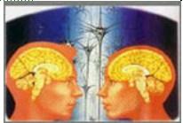 掌握记忆原理,提高记忆效能。   ―― 精英特速读记忆训练网